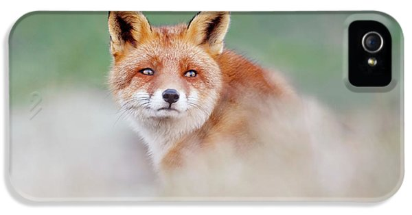 Who...? Moi? - Red Fox Looking Over Its Shoulder IPhone 5 Case