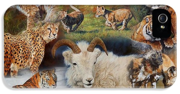 Wildlife Collage IPhone 5 Case