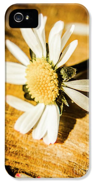 Wilt IPhone 5 Case by Jorgo Photography - Wall Art Gallery