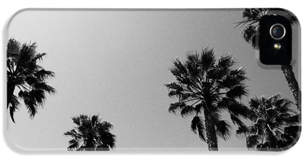 Miami iPhone 5 Case - Wind In The Palms- By Linda Woods by Linda Woods