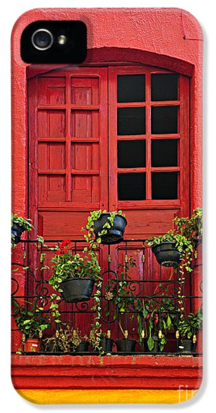 Old Houses iPhone 5 Cases - Window on Mexican house iPhone 5 Case by Elena Elisseeva