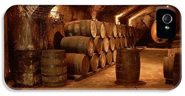Wine Barrels In A Cellar, Buena Vista IPhone 5 Case
