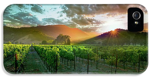 Wine Country IPhone 5 Case
