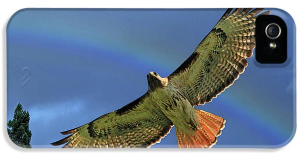 Wings 2 IPhone 5 Case by Donna Kennedy