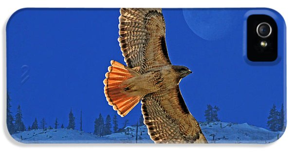 Wings IPhone 5 Case by Donna Kennedy