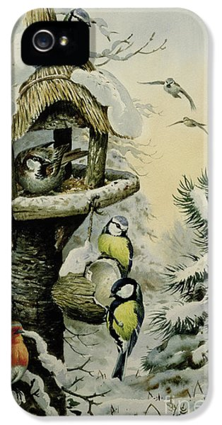 Winter Bird Table With Blue Tits IPhone 5 Case by Carl Donner