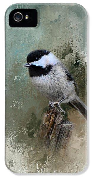 Winter Chickadee IPhone 5 Case by Jai Johnson