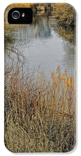 Winter On The Jordan River IPhone 5 Case