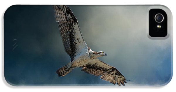 Winter Osprey IPhone 5 Case by Jai Johnson
