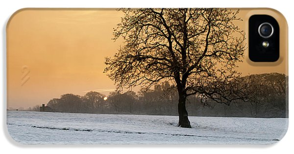 Castle iPhone 5 Case - Winters Morning by Smart Aviation