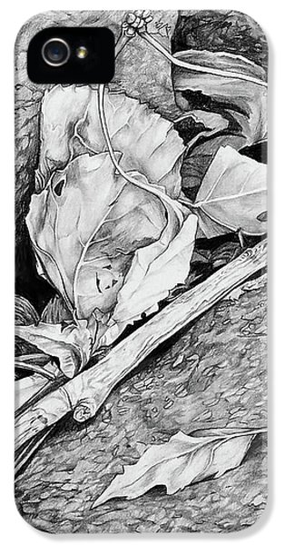 IPhone 5 Case featuring the drawing Withered Leaves by Aaron Spong