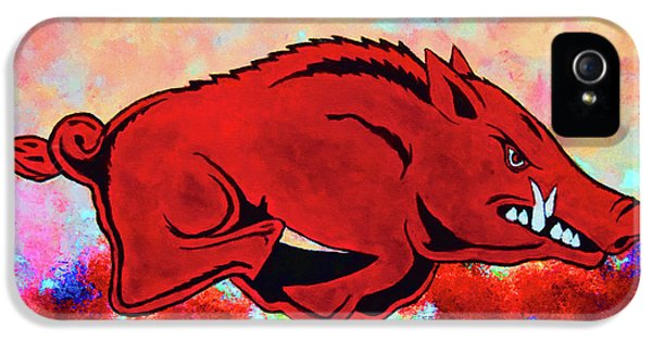 University Of Arkansas iPhone 5 Case - Woo Pig Sooie 3 by Belinda Nagy
