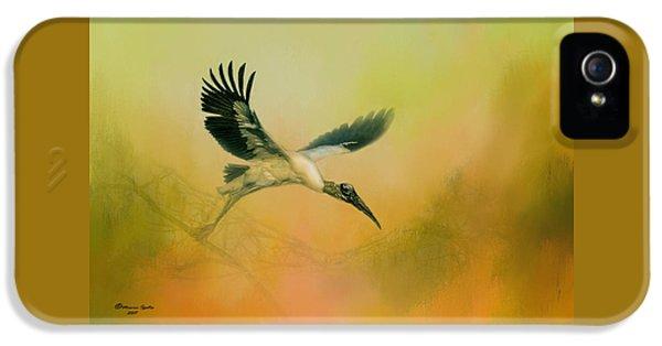 Wood Stork Encounter IPhone 5 Case