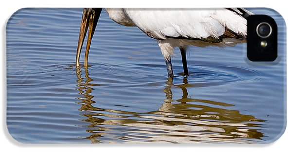 Wood Stork IPhone 5 Case by Louise Heusinkveld