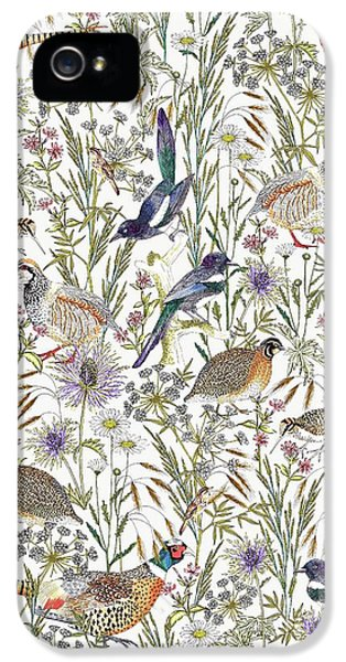 Woodland Edge Birds IPhone 5 Case by Jacqueline Colley
