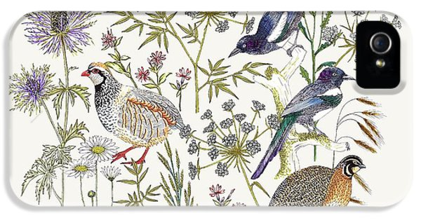 Woodland Edge Birds Placement IPhone 5 / 5s Case by Jacqueline Colley