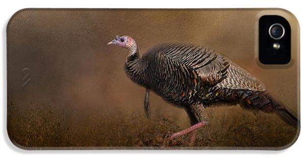 Woodland Walk - Wild Turkey Art IPhone 5 / 5s Case by Jai Johnson