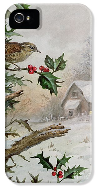 Wren In Hollybush By A Cottage IPhone 5 Case