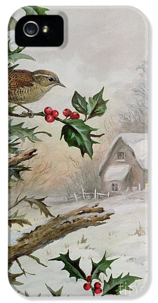 Wren In Hollybush By A Cottage IPhone 5 Case by Carl Donner