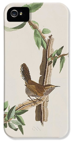 Wren IPhone 5 / 5s Case by John James Audubon
