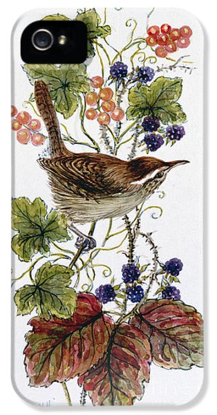Wren On A Spray Of Berries IPhone 5 Case
