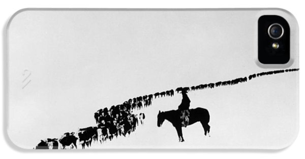 Horse iPhone 5 Case - Wyoming: Cattle, C1920 by Granger