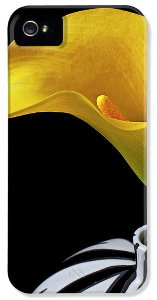 Lily iPhone 5 Case - Yellow Calla Lily In Black And White Vase by Garry Gay