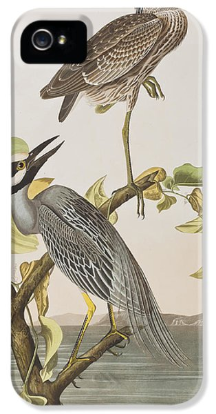 Yellow Crowned Heron IPhone 5 Case by John James Audubon