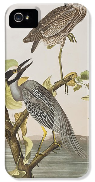Yellow Crowned Heron IPhone 5 Case by John James Audubon