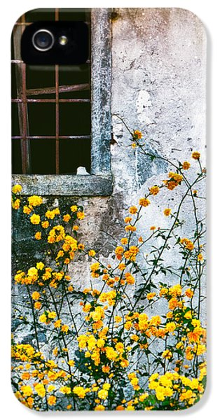 IPhone 5 Case featuring the photograph Yellow Flowers And Window by Silvia Ganora