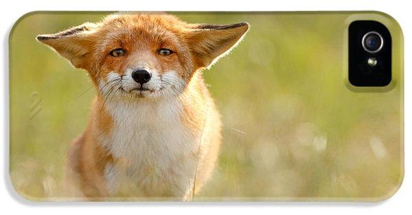 Yoda - Funny Fox IPhone 5 Case