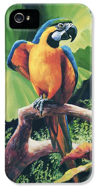 You Got To Be Kidding IPhone 5 Case by Laurie Hein