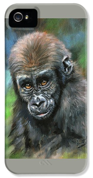 Young Gorilla IPhone 5 / 5s Case by David Stribbling