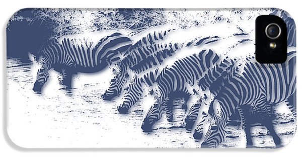 Zebra 3 IPhone 5 / 5s Case by Joe Hamilton