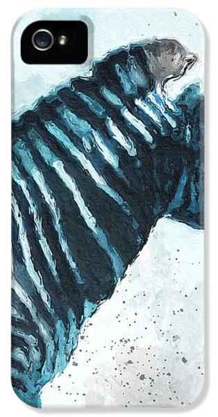 Zebra- Art By Linda Woods IPhone 5 / 5s Case by Linda Woods