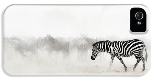 Zebra iPhone 5 Case - Zebra In Dust Of Africa by Susan Schmitz