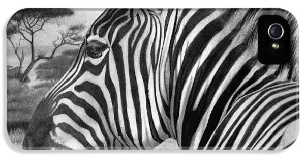 Zebra IPhone 5 Case by Tim Dangaran