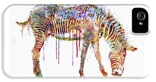 Zebra Watercolor Painting IPhone 5 Case
