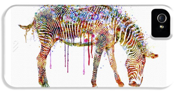 Zebra Watercolor Painting IPhone 5 Case by Marian Voicu