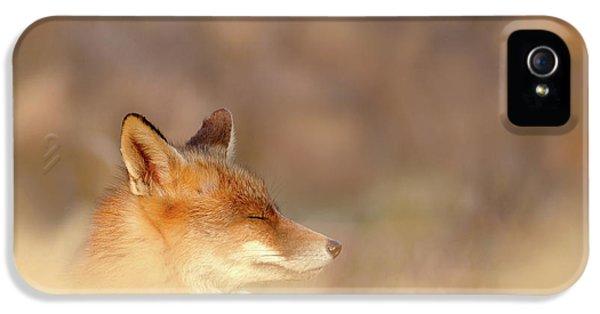 Zen Fox Series - Dream Fox IPhone 5 Case