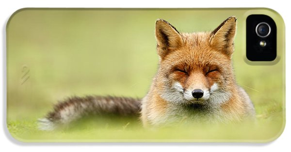 Zen Fox Series - Zen Fox In A Sea Of Green IPhone 5 Case