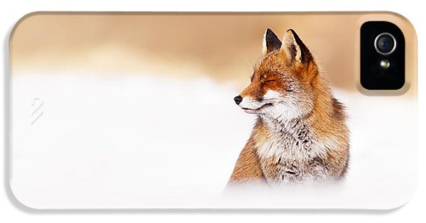 Zen Fox Series - Zen Fox In Winter Mood IPhone 5 Case by Roeselien Raimond