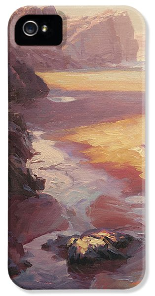 Pacific Ocean iPhone 5 Case - Hidden Path To The Sea by Steve Henderson