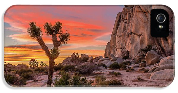 Landscape iPhone 5 Case - Joshua Tree Sunset by Peter Tellone