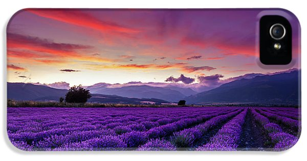 Landscape iPhone 5 Case - Lavender Season by Evgeni Dinev