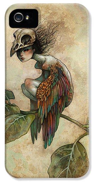 iPhone 5 Case - Soul Of A Bird by Caroline Jamhour