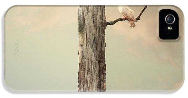 Fairy iPhone 5 Case - Surreal Illustration Imagine by Valentina Photos