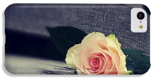 Decorative iPhone 5c Case -  Gray In Romantik by Jacqueline Schreiber
