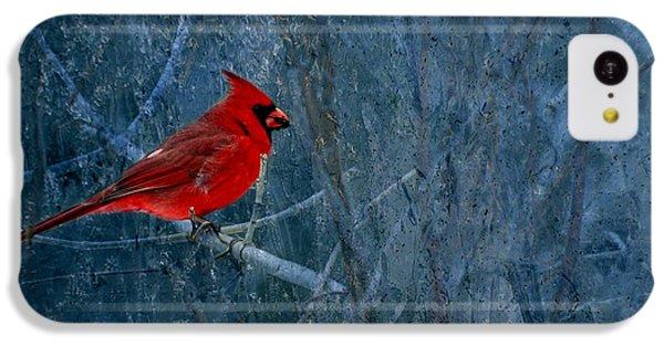 Northern Cardinal IPhone 5c Case