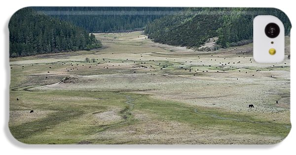 A Herd Of Yaks In Potatso National Park IPhone 5c Case